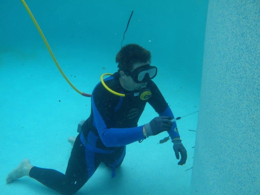 Roof swim leak detection lowflo - Swimming pool leak detection and repair ...